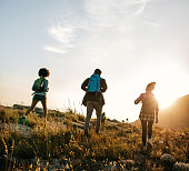 Rear view shot of young people hiking in nature on a summer day. Three young friends on a country walk.