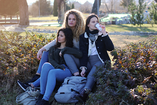 700702502 istock photo Three young happy girls in public park 1211173249