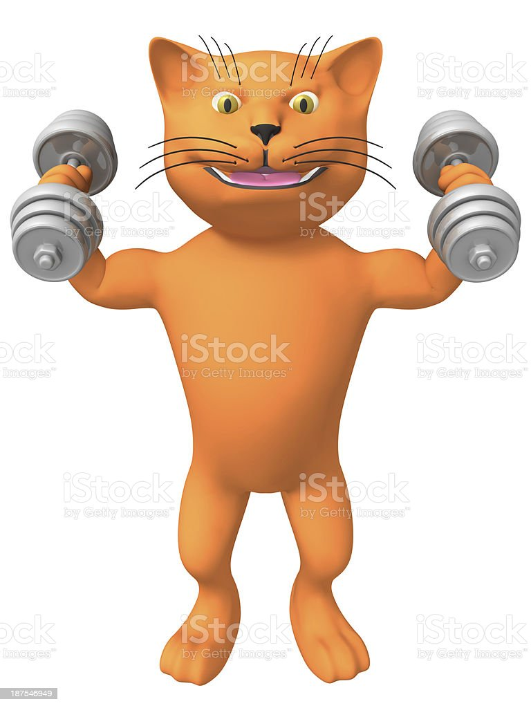Three-dimensional image of a cat with dumbbells. stock photo