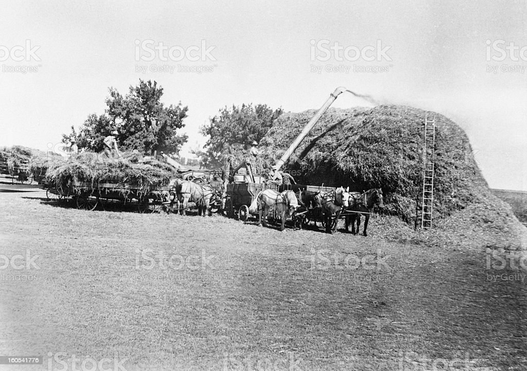 threshing, retro stock photo