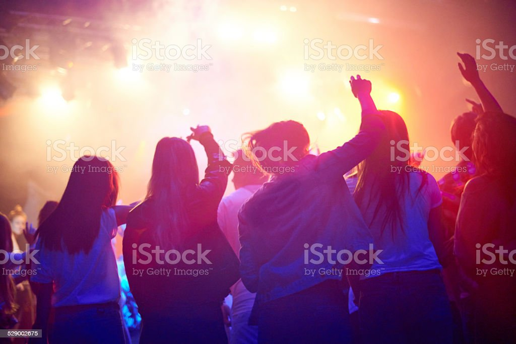 Throngs of adoring music fans stock photo