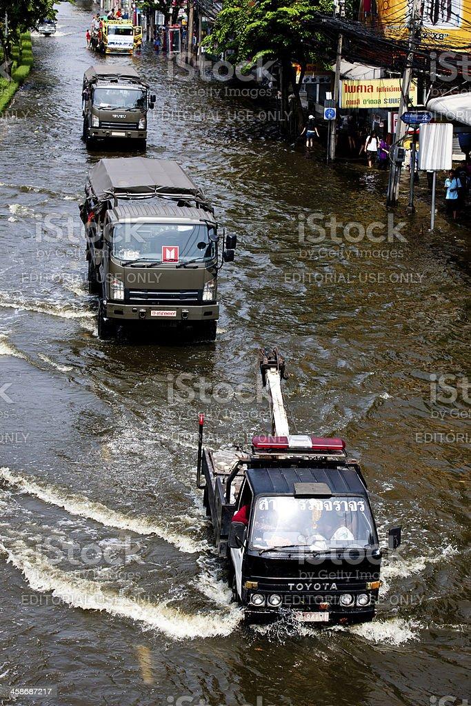 Through the Flood royalty-free stock photo