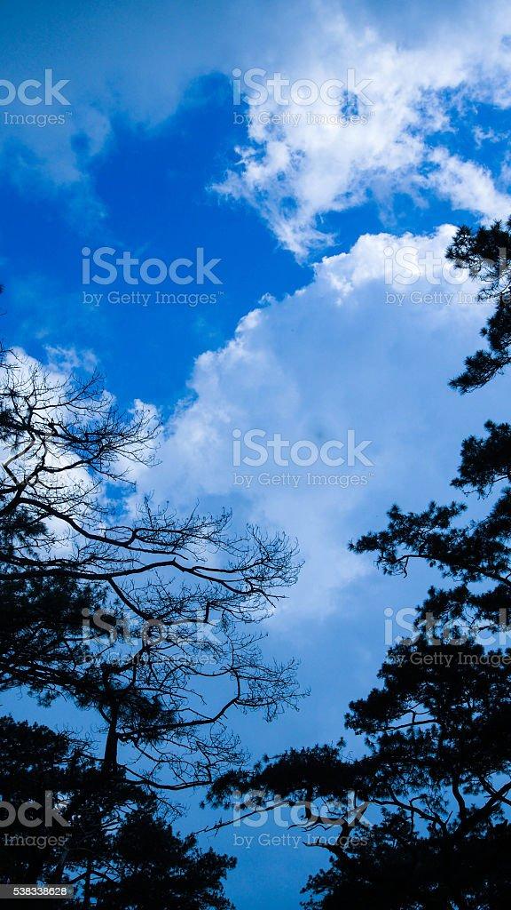 Through the Sky stock photo