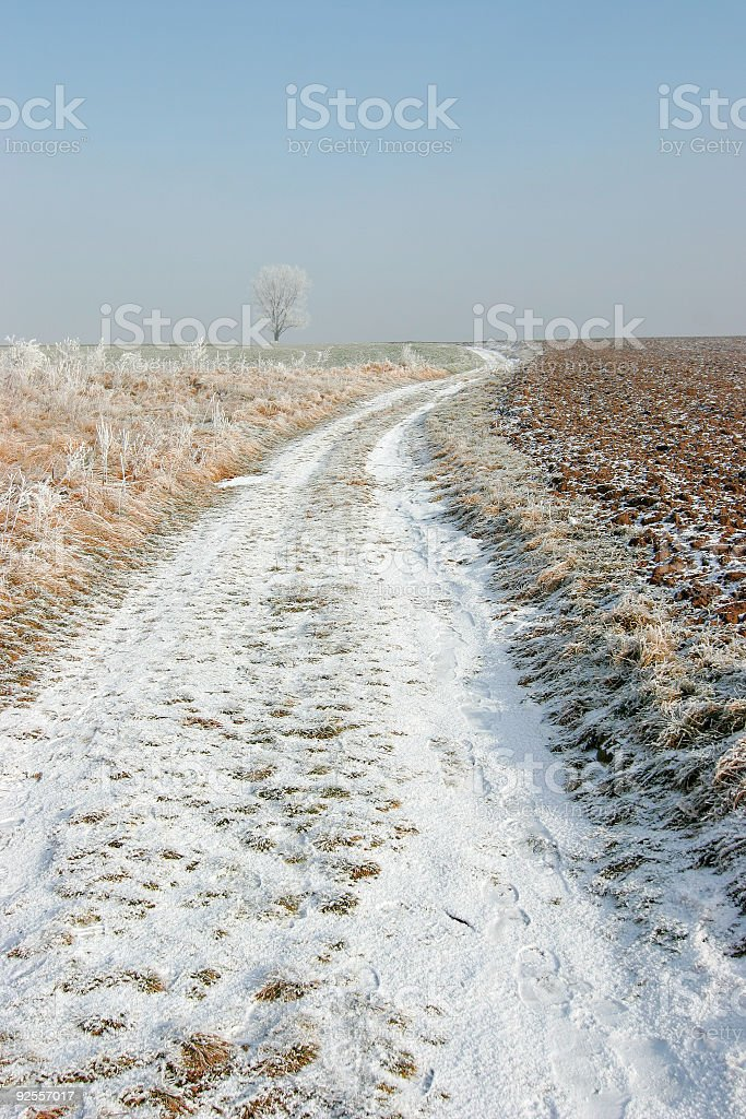 Through Winter Fields III royalty-free stock photo