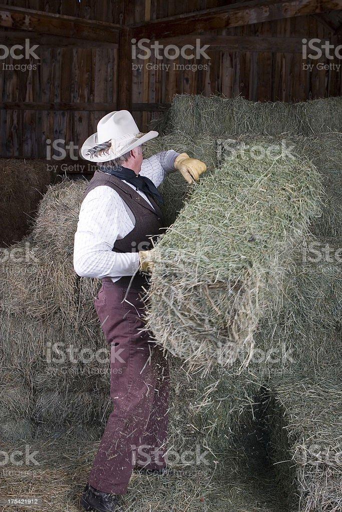 Throwing Bales stock photo
