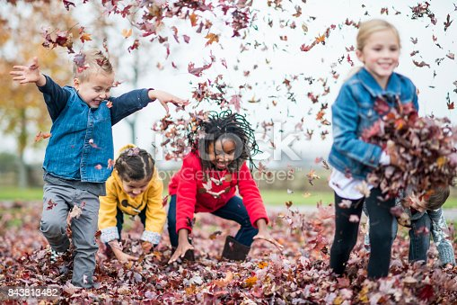 istock Throwing Leaves 843813482