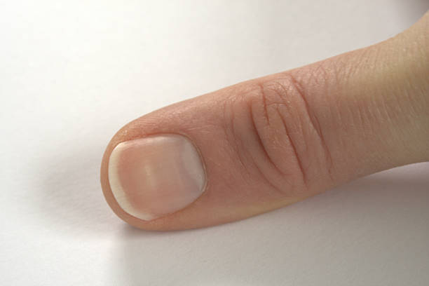 thumb and thumbnail - thumb stock photos and pictures