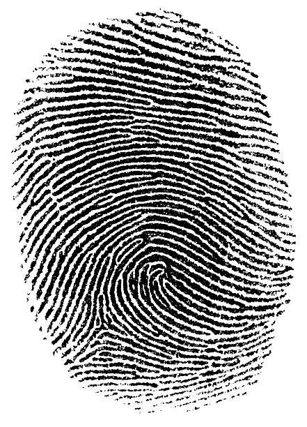 Thumb fingerprint stock photo