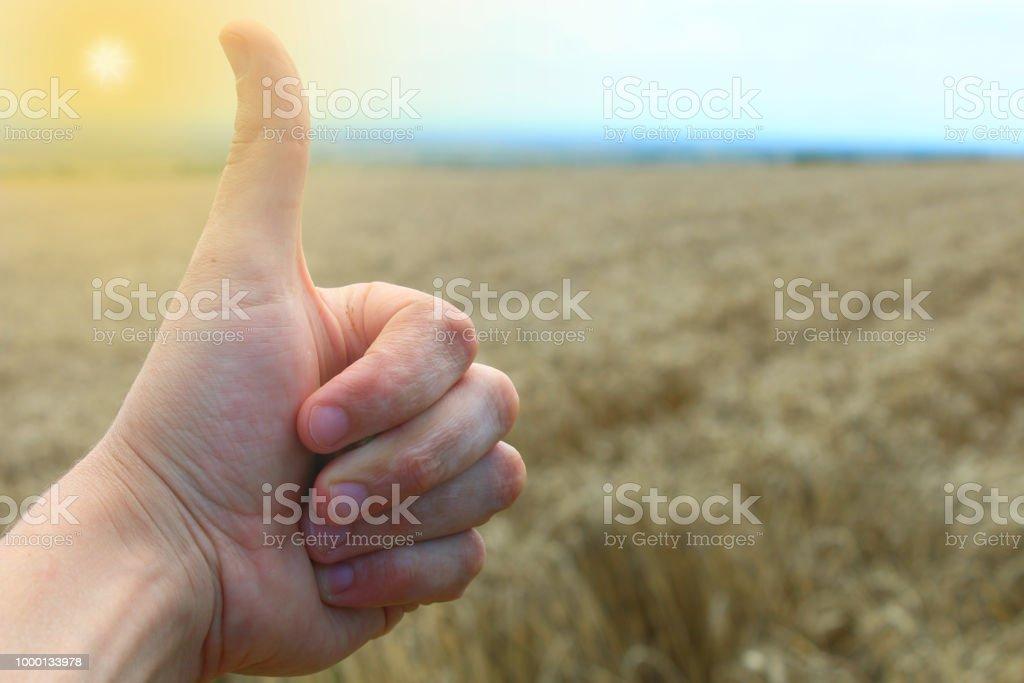 Thumb up. stock photo
