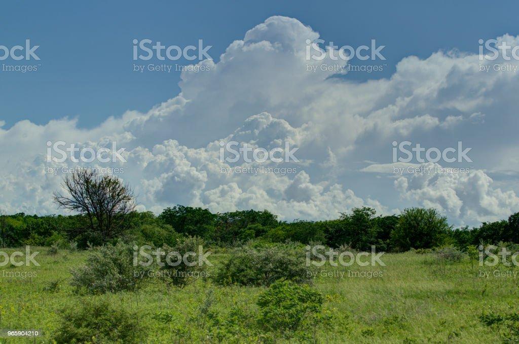 Regn moln - Royaltyfri Elnät Bildbanksbilder