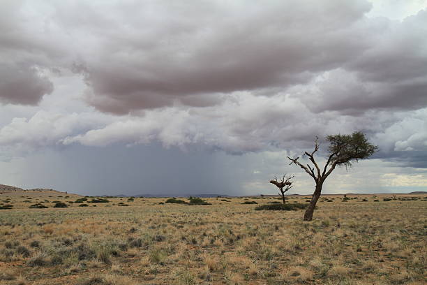 Thunderstorm over desert landscape stock photo
