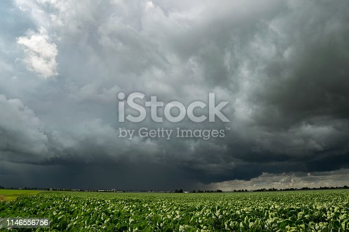 858837068istockphoto Thunderstorm with a very dark appearance over the countryside of Holland. 1146556756