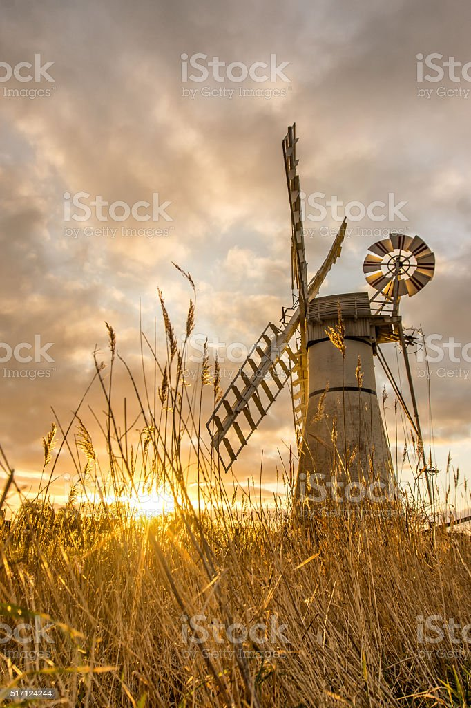 Thurne Mill at Sunrise through the reeds stock photo