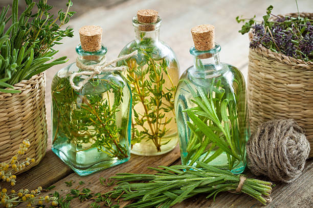 Thyme and rosemary essential oil or infusion – Foto