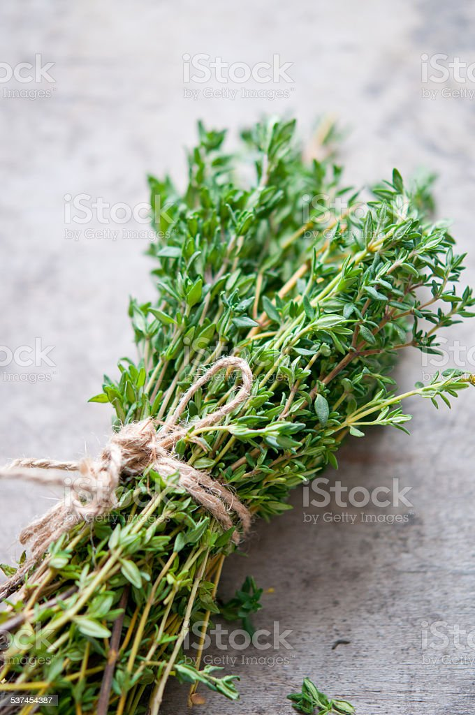 Thyme bunch close up stock photo