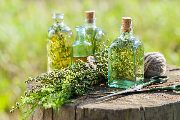 thyme, estragon and rosemary essential oil or infusion - tarragon stock photos and pictures