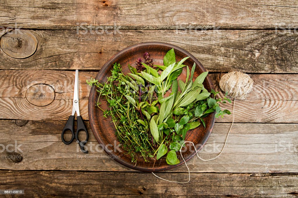 Thyme; oregano; sage, basil herbs, scissors, coil of thread on brown crockery over on old wooden background. Top view. Copy space. royalty-free stock photo