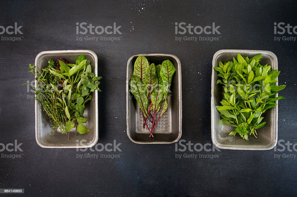 Thyme; oregano;  sage, basil; sorrel; mint in gray box over on dark background. Top view. royalty-free stock photo