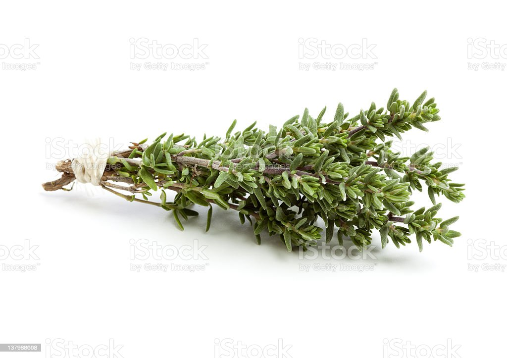 thyme twigs tied with twine stock photo