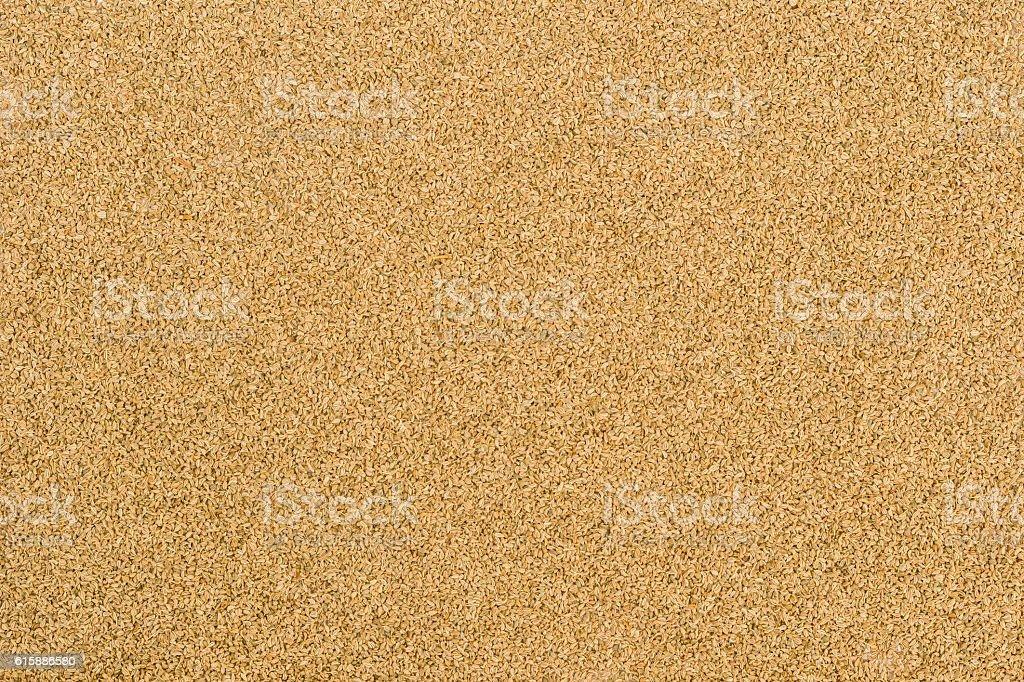 Thymol seeds (ajwain) stock photo