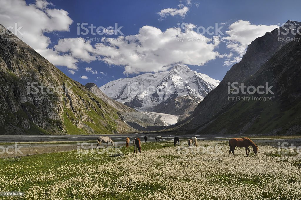 Tian-Shan in Kyrgyzstan stock photo