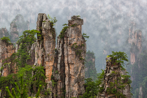 Tianzi Avatar mountains nature park - Wulingyuan China - travel background