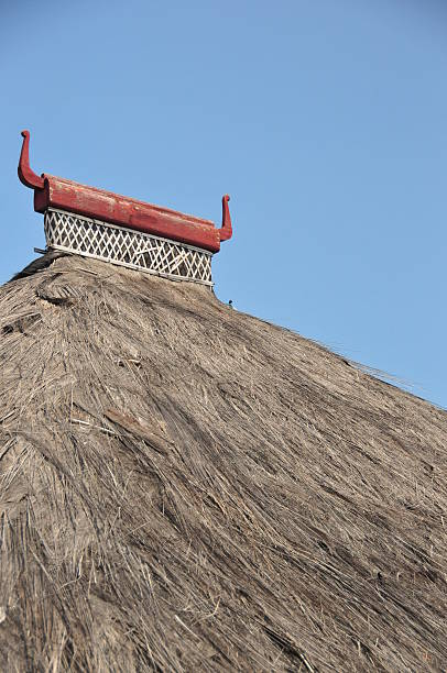 tibar bay, east timor: roof of traditional timorese house - lulik stock photos and pictures
