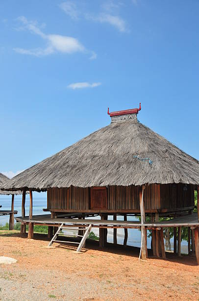 tibar bay, east timor: traditional timorese house - lulik stock photos and pictures