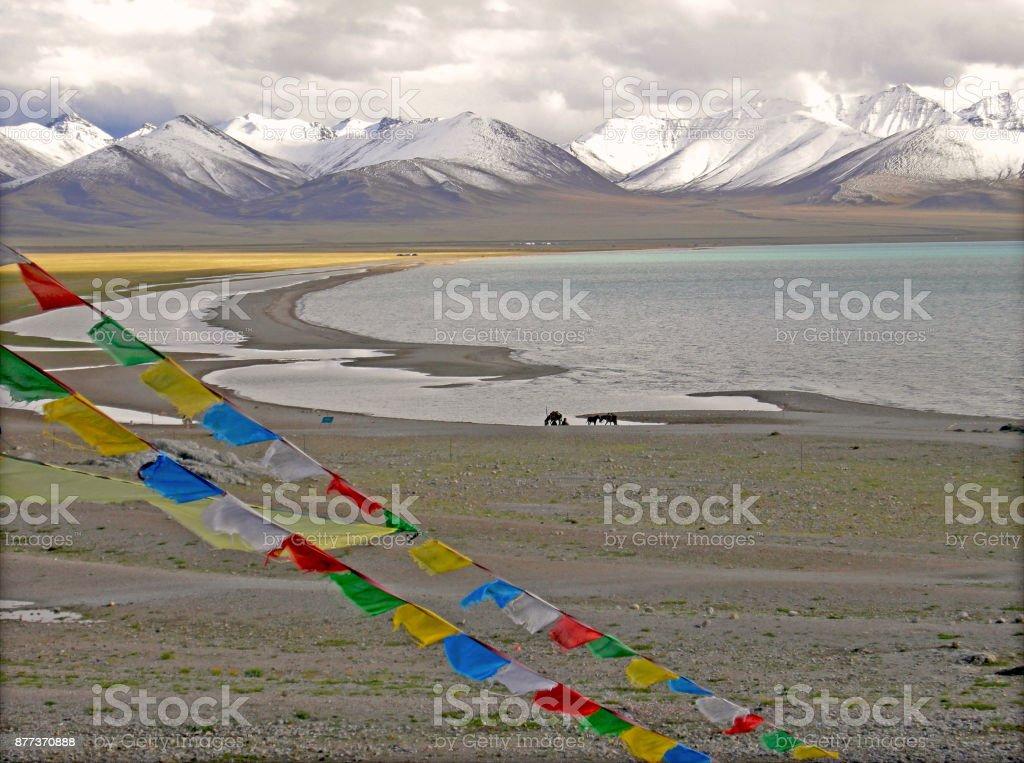 Tibet Lago Namtso stock photo