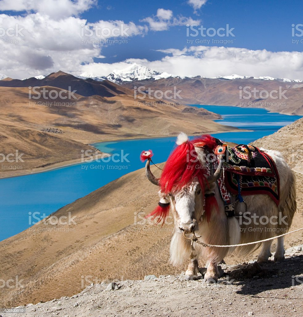 Tibet - Yamdrok Lake - Tibetan Plateau stock photo