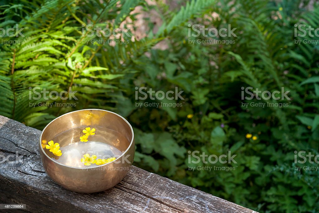tibetan bowl with yellow flowers floating stock photo