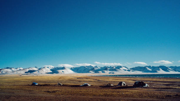 Tibetian Highland stock photo