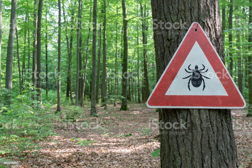 tick insect warning sign stock photo