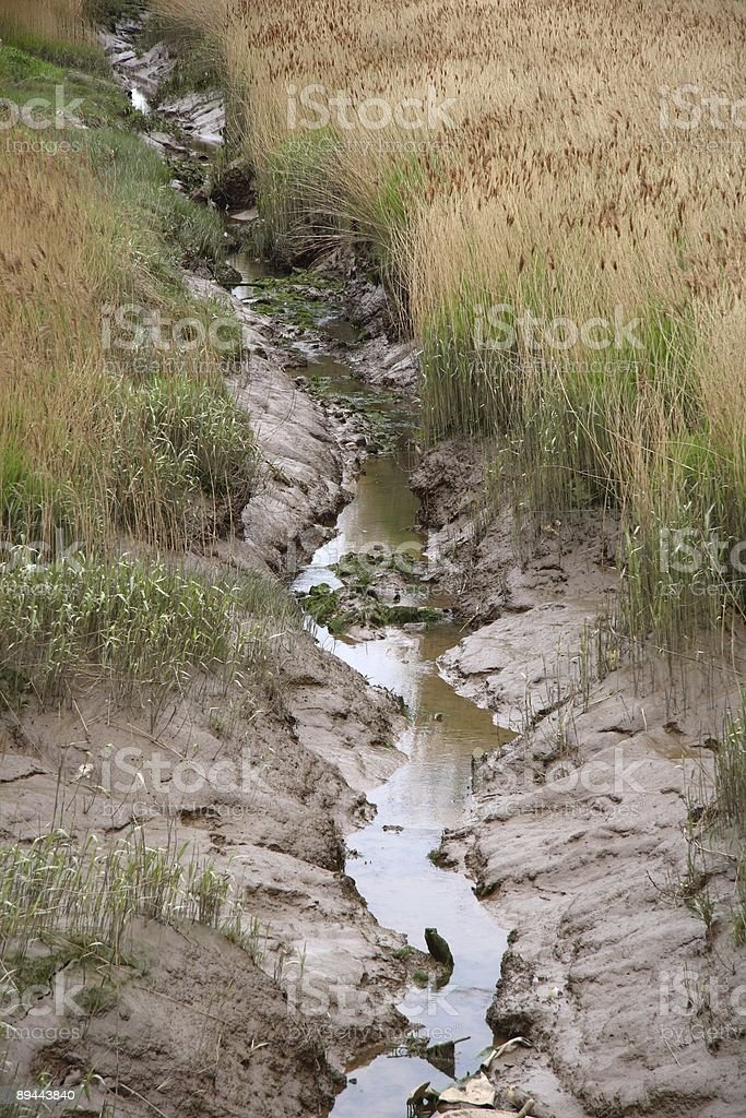 Tidal Channel stock photo