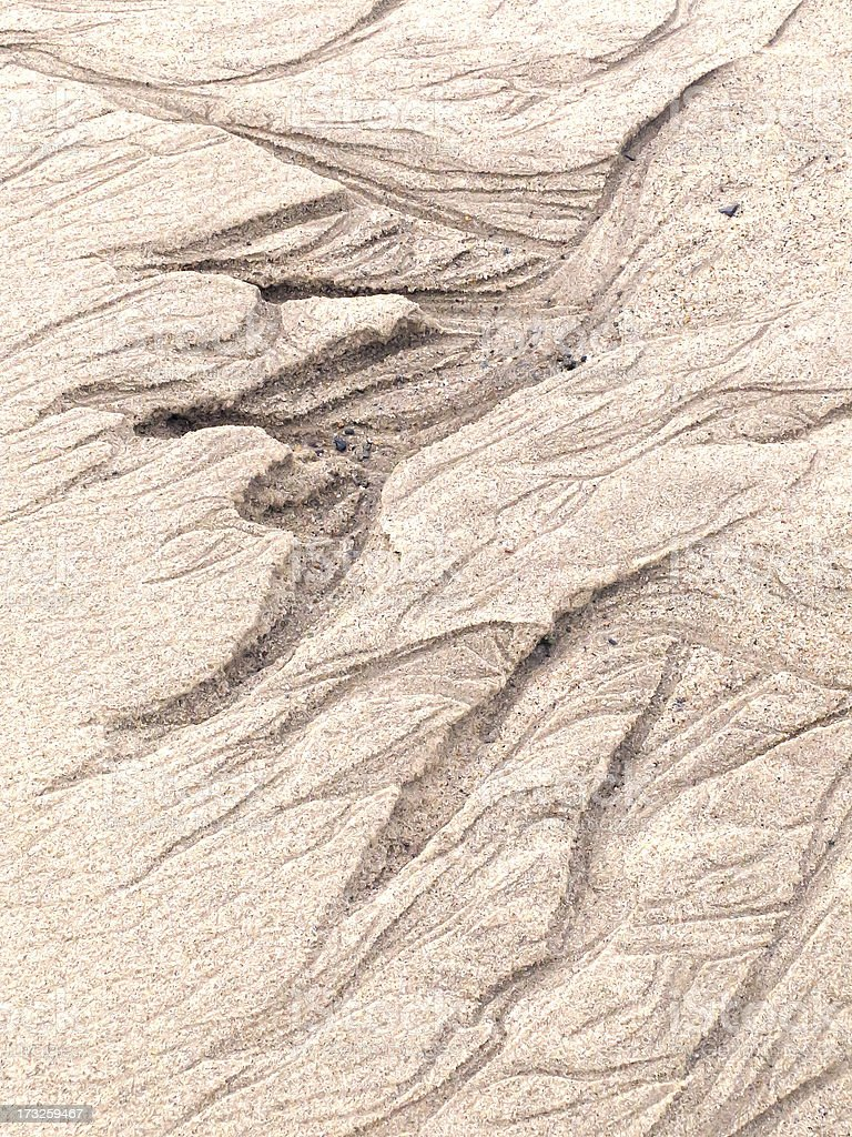 Tidal erosion in beach sand royalty-free stock photo
