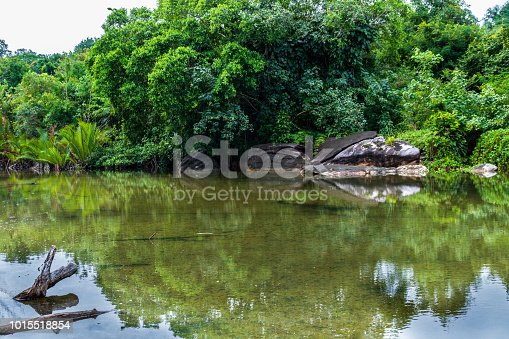 View across an inland tidal pool on the island of Koh Kood, Thailand; the lush foliage of the local tropical rain forest is in the background.