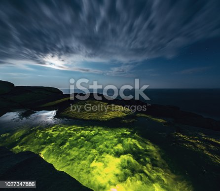 A tidal rock pool is teaming with algae and sea life on the coast.  Long exposure.