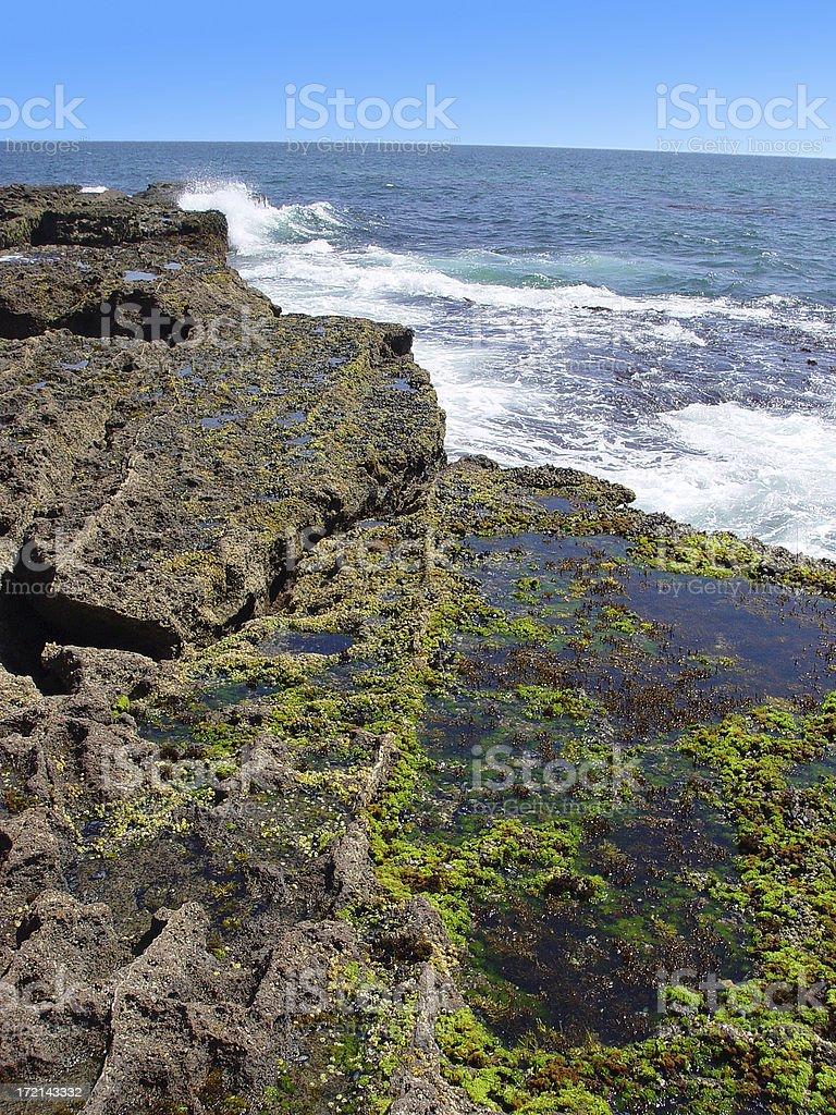 Tidal Pool royalty-free stock photo