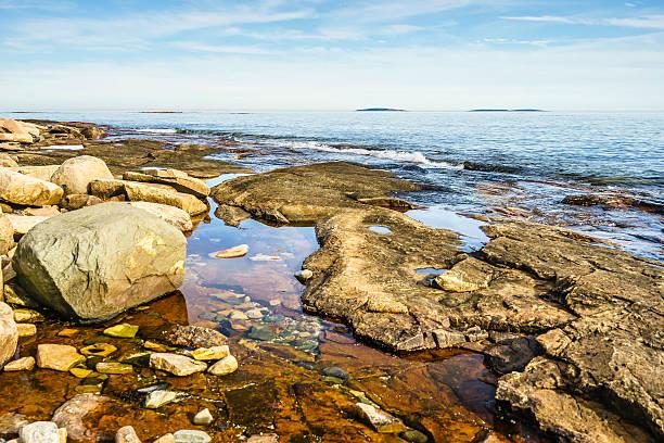 Tidal pool seascape in Maine