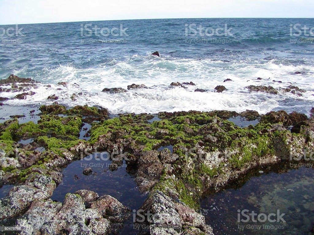 tide pools royalty-free stock photo