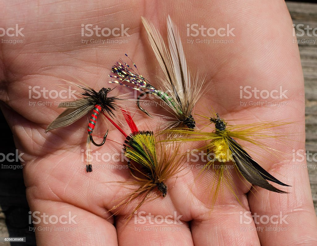 Tied flies, bait for fly fishing stock photo