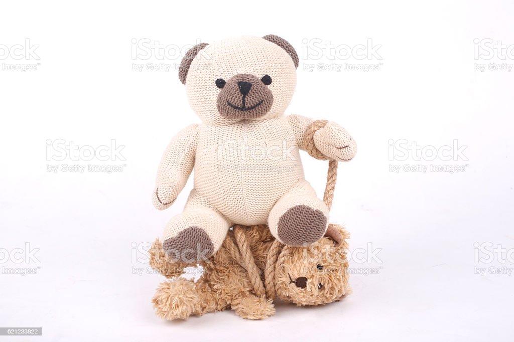 Tied teddy bear – Foto