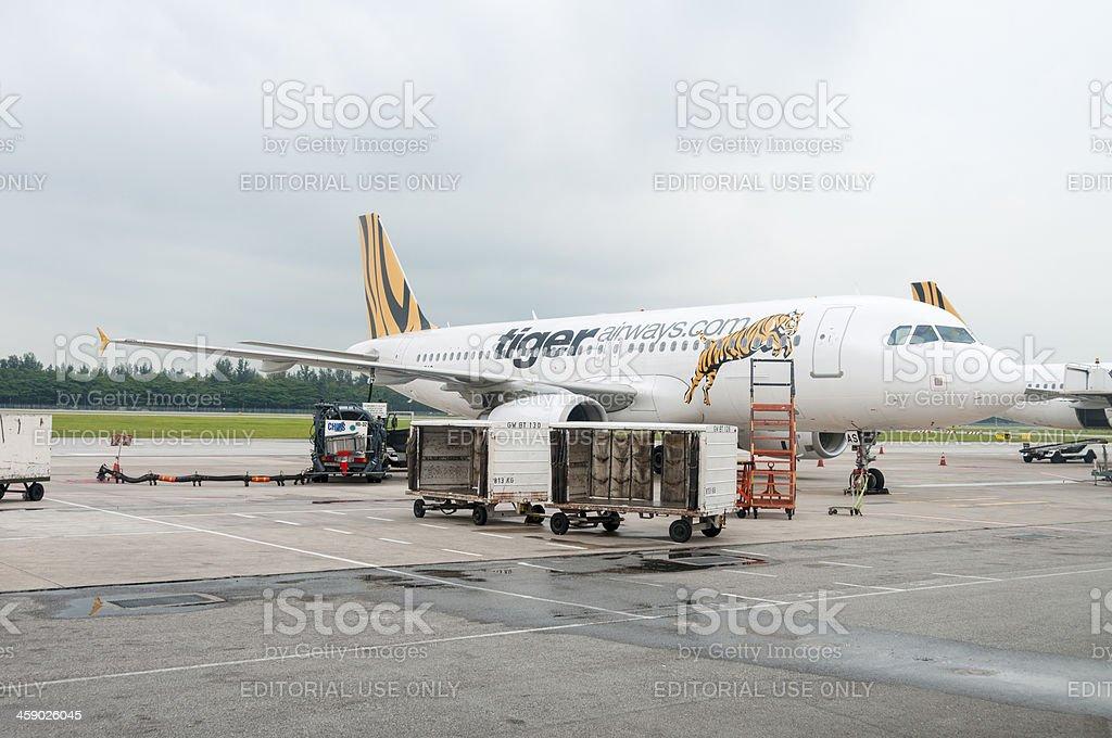 Tiger Airways Aeroplane At Changi Airport In Singapore royalty-free stock photo