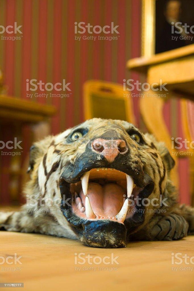 Tiger carpet royalty-free stock photo