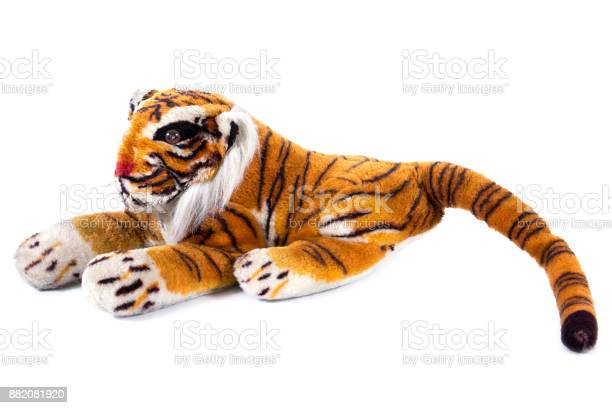 Tiger doll isolated on white backgroundcloseup of bengal tiger doll picture id882081920?b=1&k=6&m=882081920&s=612x612&h=ckmueb97xt5kb5sd3q2v jb67h5a8xc8hda38hv jlu=