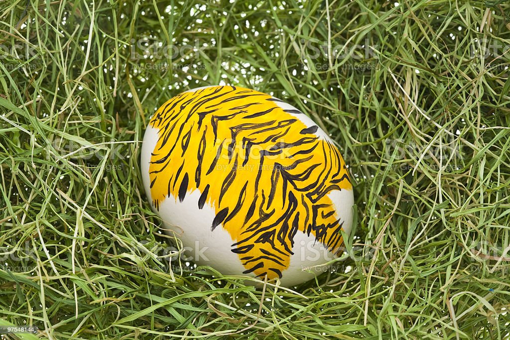 Tiger Easter egg royalty-free stock photo
