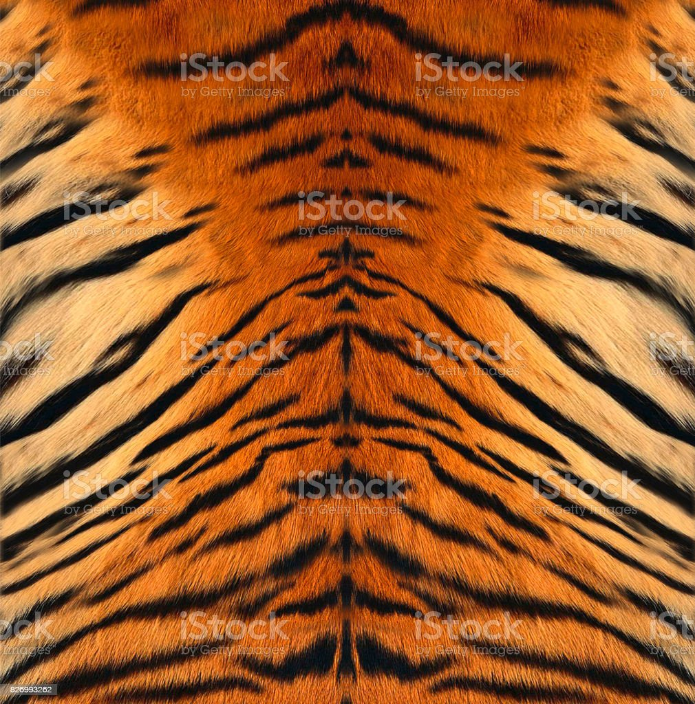 Tiger Leather stock photo