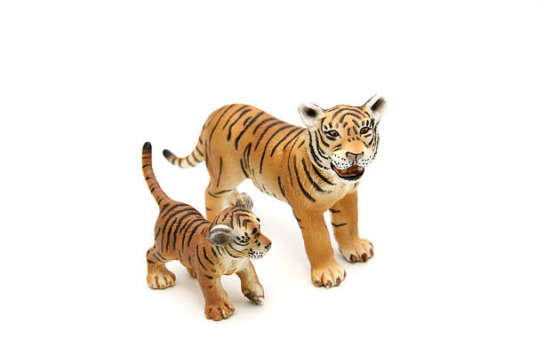 Tiger mother and baby stock photo
