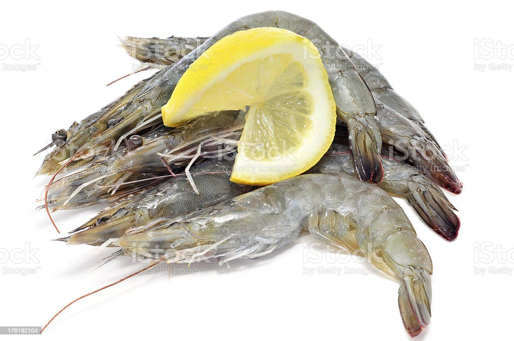 tiger prawns royalty-free stock photo