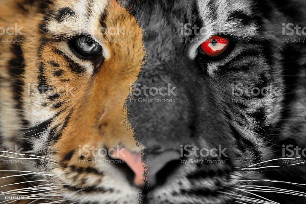Tiger-scary Horror-Porträt. Halloween oder Ghost Stil – Foto